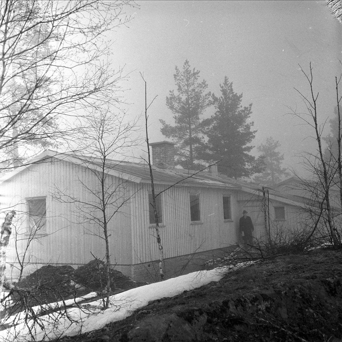 Hus i skogholt antakelig Tyskerbakker i Froland, fotografert i mars 1959.