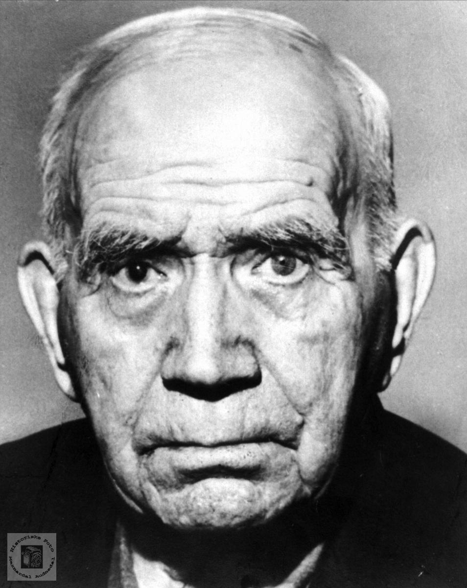 Portrett av Norskamerikanaren Salve Trygsland, Bjelland.