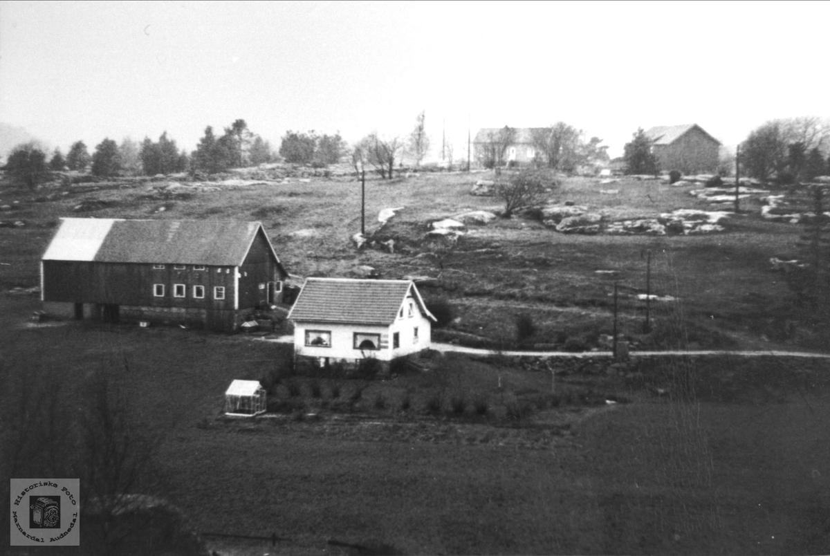 Austre Grimestad i Øyslebø.