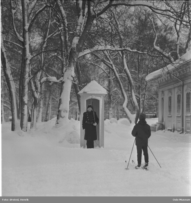 skilderhus, gardist, jente, skitur, Gardens vaktstue, park, snø, vinter