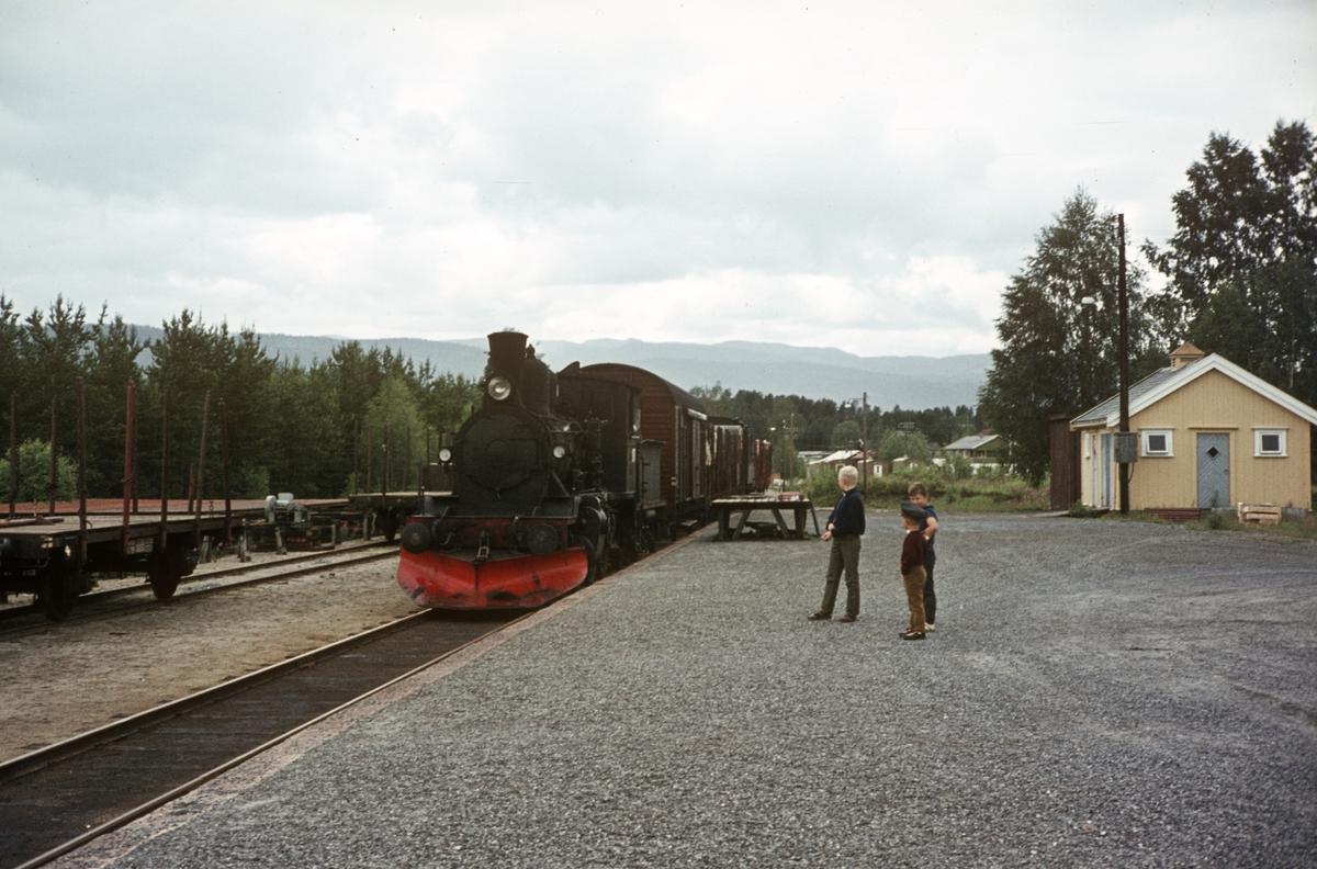 Godstog fra Rødberg til Kongsberg ankommer Flesberg stasjon. Damplok 21b nr. 225.