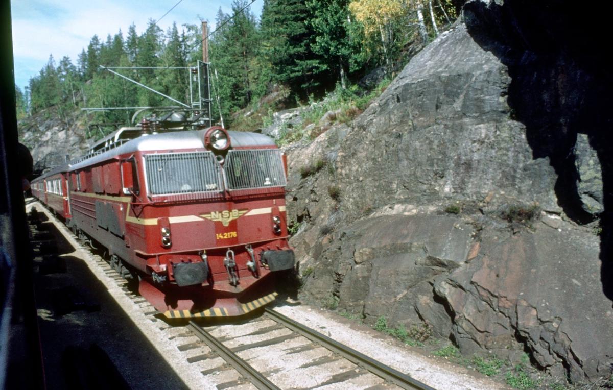 Ekspresstog fra Bergen til Oslo krysser dagtoget til Bergen i Ørgenvika. Lokomotiv type El 14.