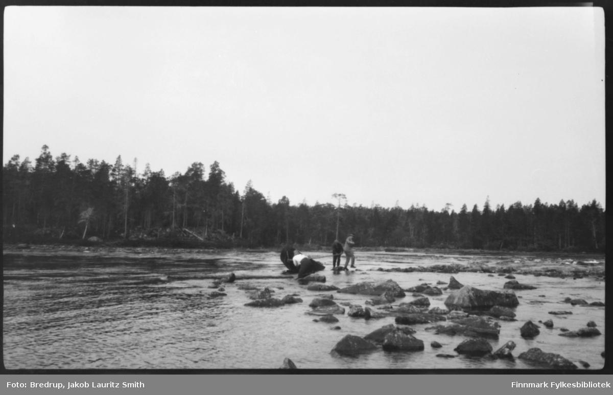 Tre menn strever med en elvebåt ved et stryk i Pasvik. En av dem prøver å trippe tørrskodd i land, de to andre redder båten.  Tett furuskog langs bredden av elva.
