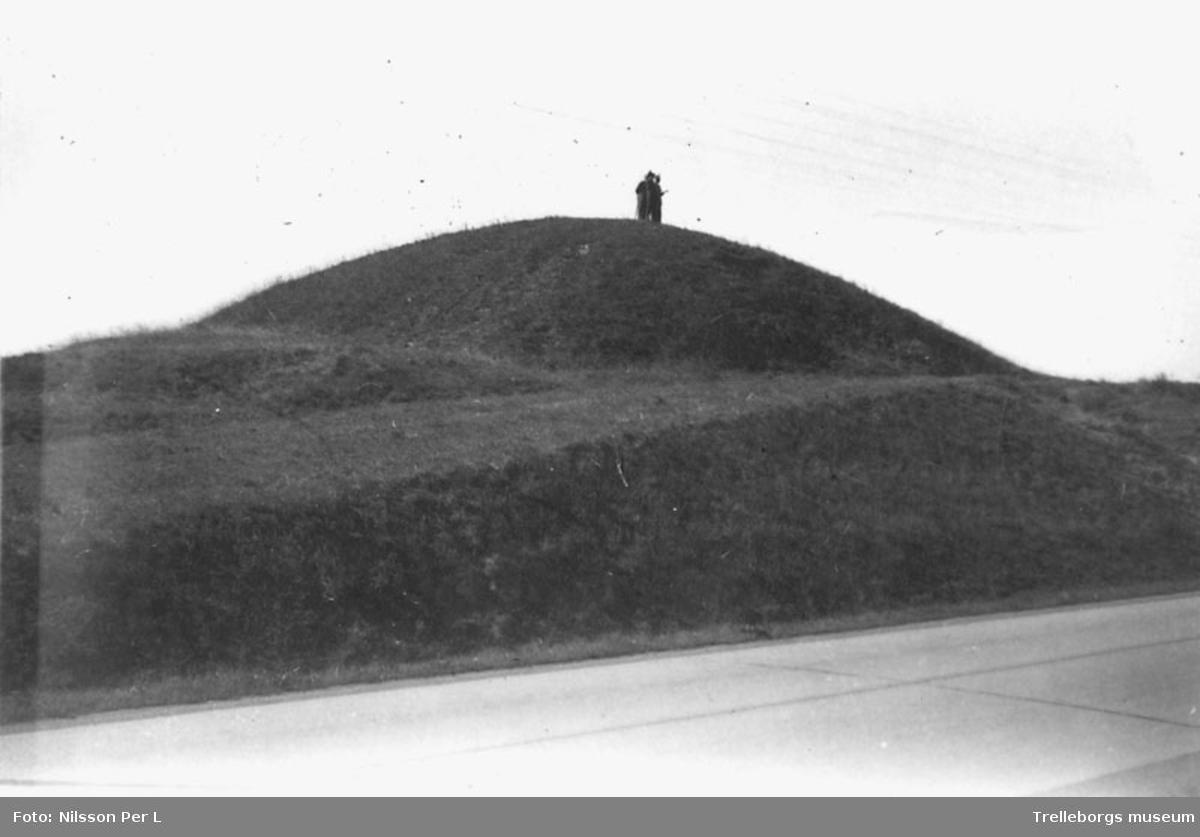 Vemmenhögs härad Tullstorp Galgebacken  Enligt en artikel i Trelleborgs Allehanda ägde den sista avrättningen här rum1848 då Tobias Andersson och  kumpanen Ola Ljung halshöggs för mord och rån på lantbrukaren Hans Andersson i Grönby.  Foto P.L Nilsson 9/8 1953.