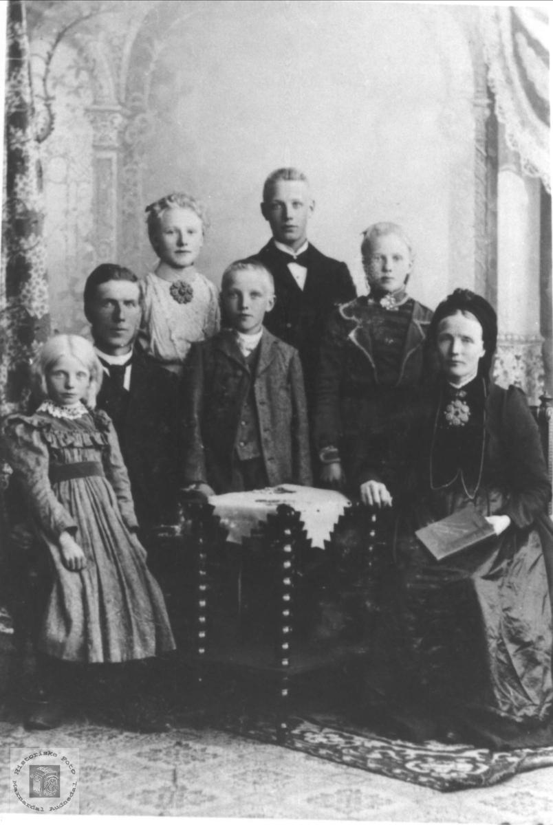 Familie fra Fyresdal (Naper familien)