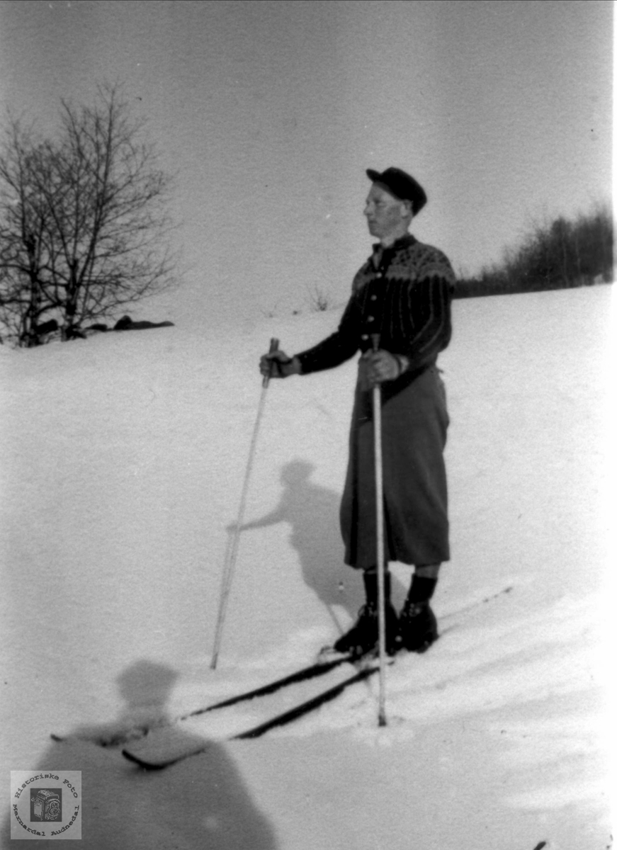 Solskinsdag på ski. Fridtjof Tjomsland.