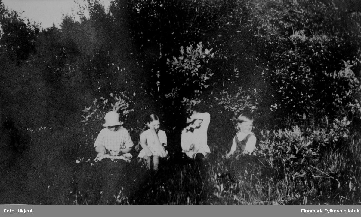 Bildet er tatt sommeren 1924 i Jarfjord. Barna på bilde er ukjente. Påskrift i originalalbumet: 'Tulla, Bisse, Busse og Bollebas'. Jentene har på seg sommerkjoler og enkelte av de har flettet hår. Barnet som er nummer tre fra venstre er en gutt med sløyfe rundt halsen. De sitter ved siden av en skog og er omringen av planter og busker. Jenten helt til venstre har på seg en lue. Jenten helt til høyre ser ut til å ha en slags vest på seg.