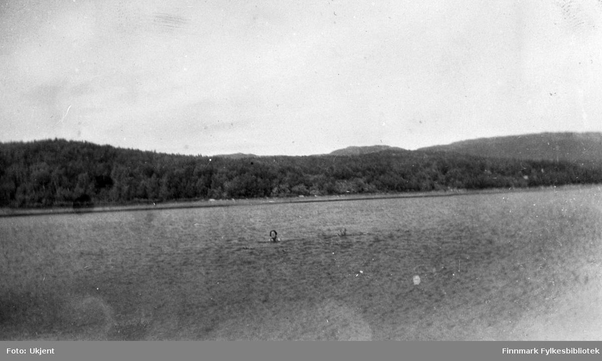 Badeliv i Jarfjord. Man kan se at det er to personer som svømmer i vannet. Bak dem kan man se fjæra, skog og fjell. Det kan se ut som om begge er kvinner.
