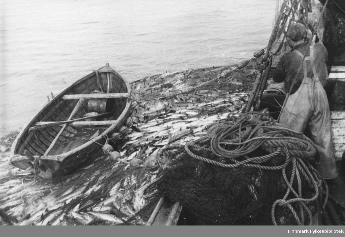 Notbåten Varfjell, eier Wiggo Lund, har gjort en middels seifangst (20-25 tonn) i 1954 - B 5709