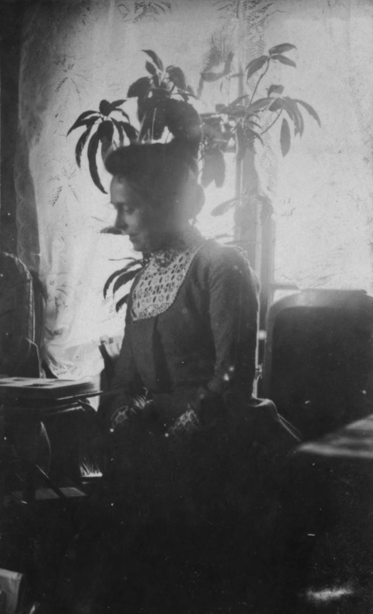 En dame sitter foran vinduet. Det er lyse gardiner i vinduene. En blomster sees bak hodet hennes.Stoler, bord i bakgrunnen.