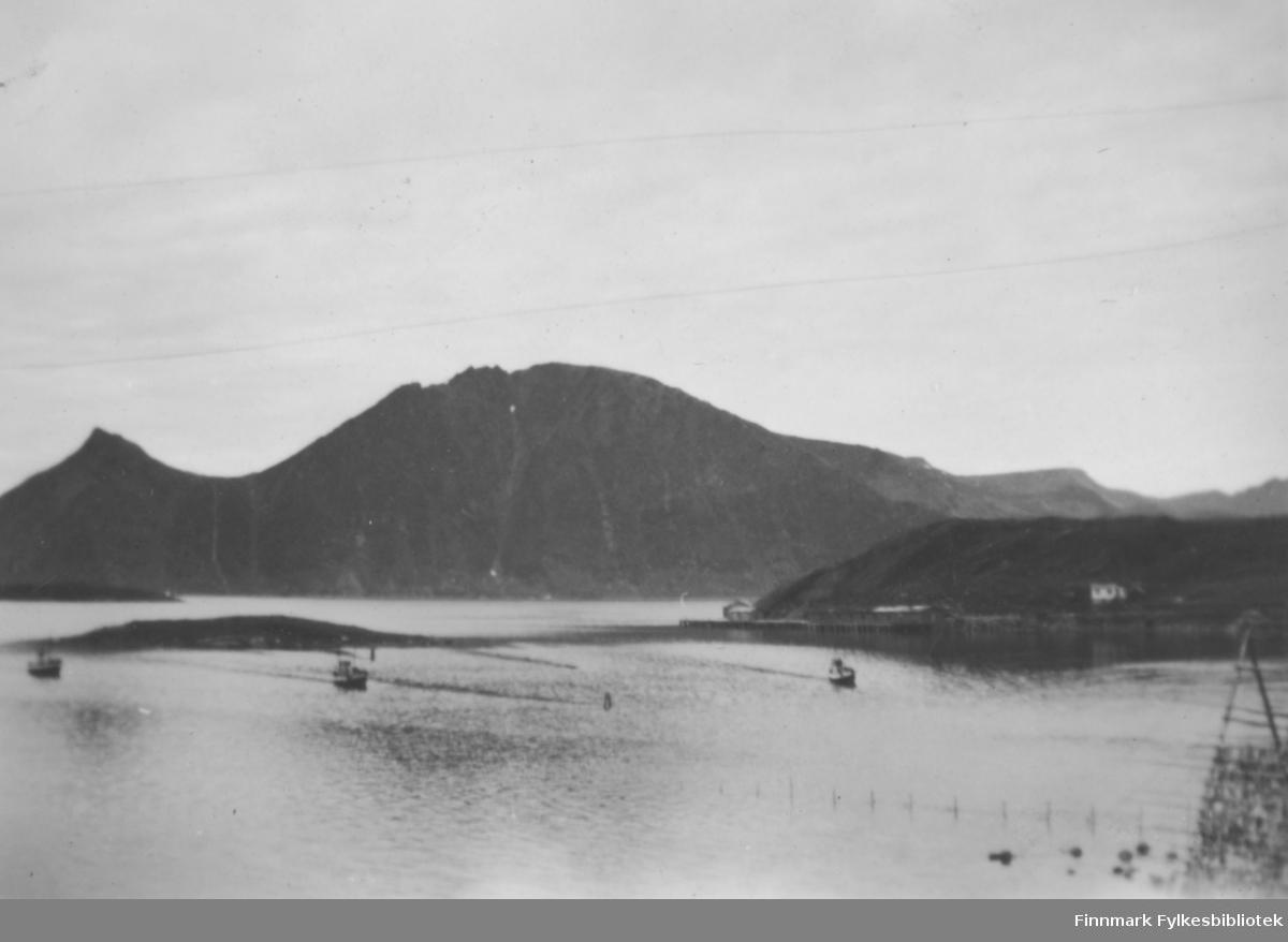 Bergsfjord havn fotografert en fin sommer-/høstdag. Flere båter ligger på sjøen. En rekke med påler går ut i sjøen fra land nederst på bilde og en hjell står i strandkanten. Et nes stikker ut til høyre på bildet, sannsynligvis Skippernes og holmen til venstre på bildet er nok Skjåholmen. En del bygg er står på neset. I bakgrunnen er et stort fjellparti med Bukkeskinnfjellet til venstre og Storfjellet i midten. Det er ikke snø/snøflekker på fjellene, noe som tyder på at bildet er tatt sommerstid.