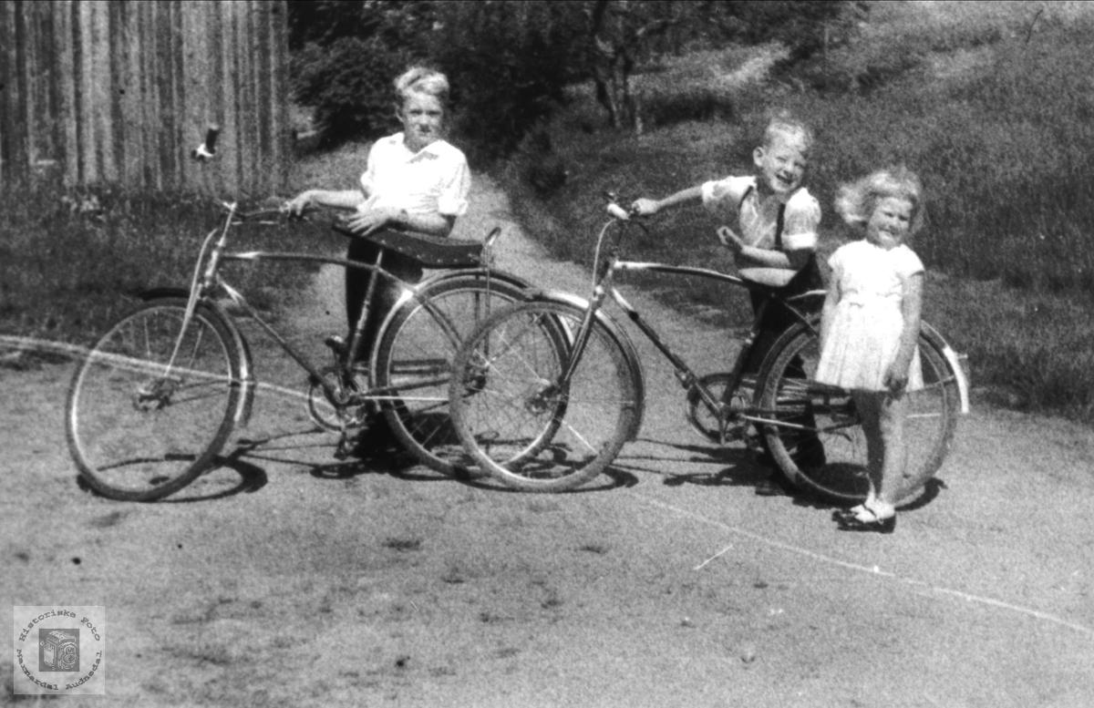 Med sykkel. Jarl, Kåre og Jorunn Haugland.