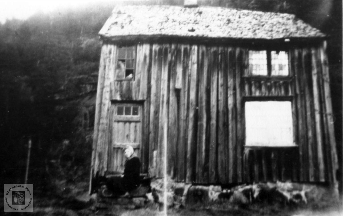 Gammelt hus. Austre Øyan, (Sveinall), Bilde tatt ca. 1948.