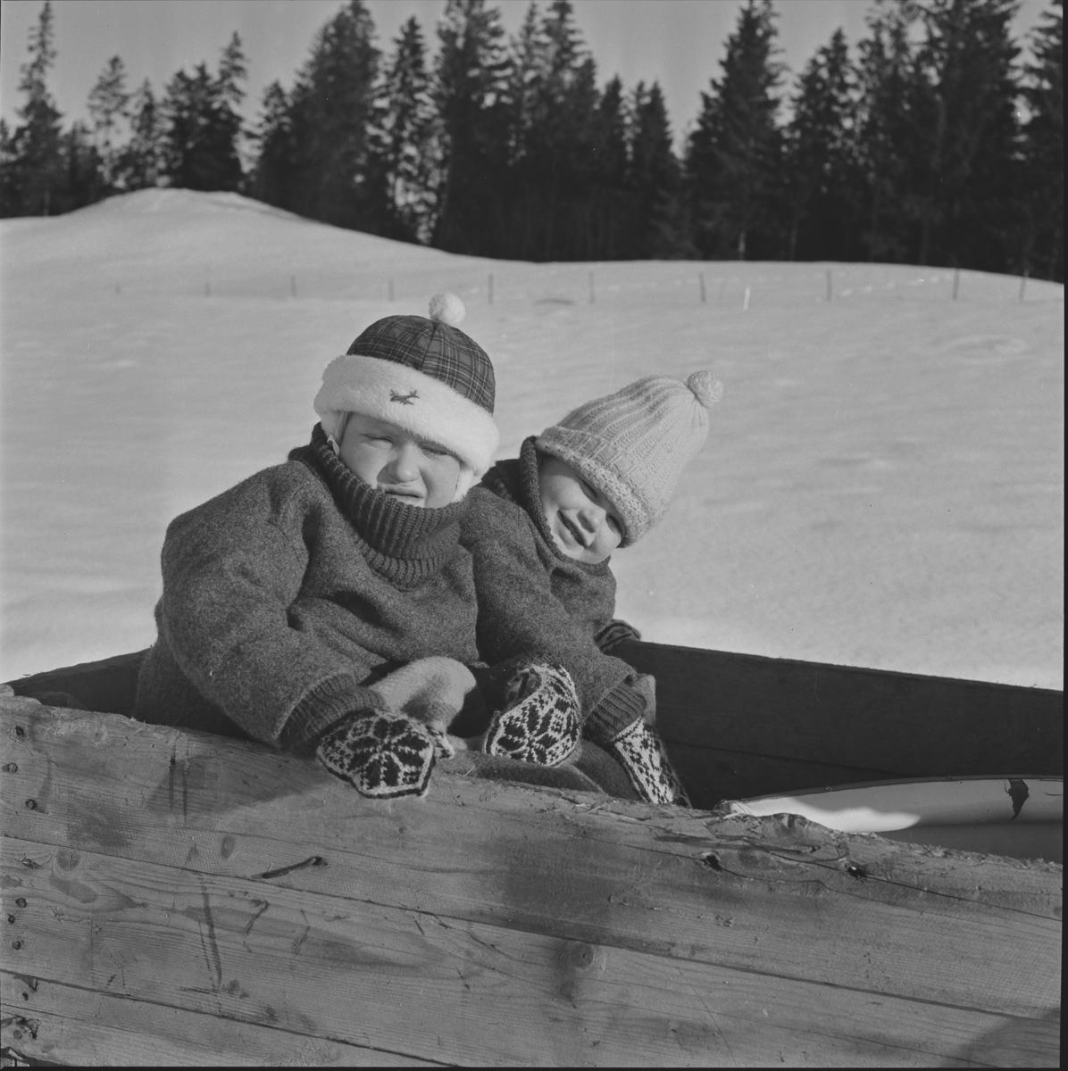 På tur med hest og slede til tangen på Sørum i Gjerdrum vinteren 1964