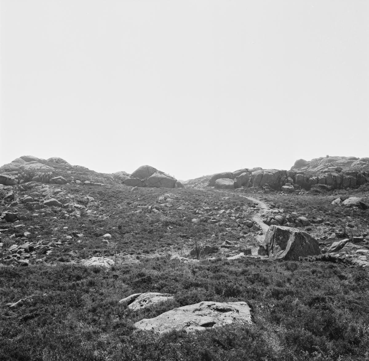 Terrasse ca 130 m sør for R5, fra N.