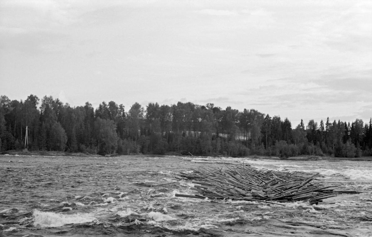Tømmervase i vannet ved Funnefossen i Glomma. Funnefoss, Nes, Akershus.