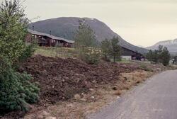 Farmannsveien med Lågheia i bakgrunnen.