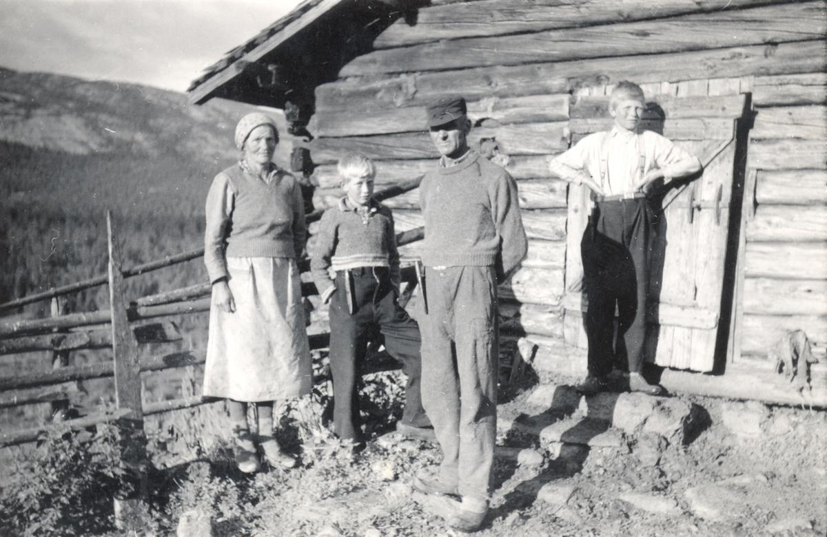Høystul, Gomo, Goffa, Jørund og Hallvard Lie