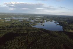 Vy över norra delen av sjön Bunn.