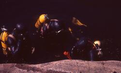 Felt 1967. Dykkere.