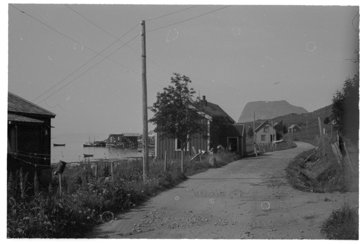 Bebyggelse langs veien ut mot Bøneset i Kasfjord. I bakgrunnen fjellet Elgen.