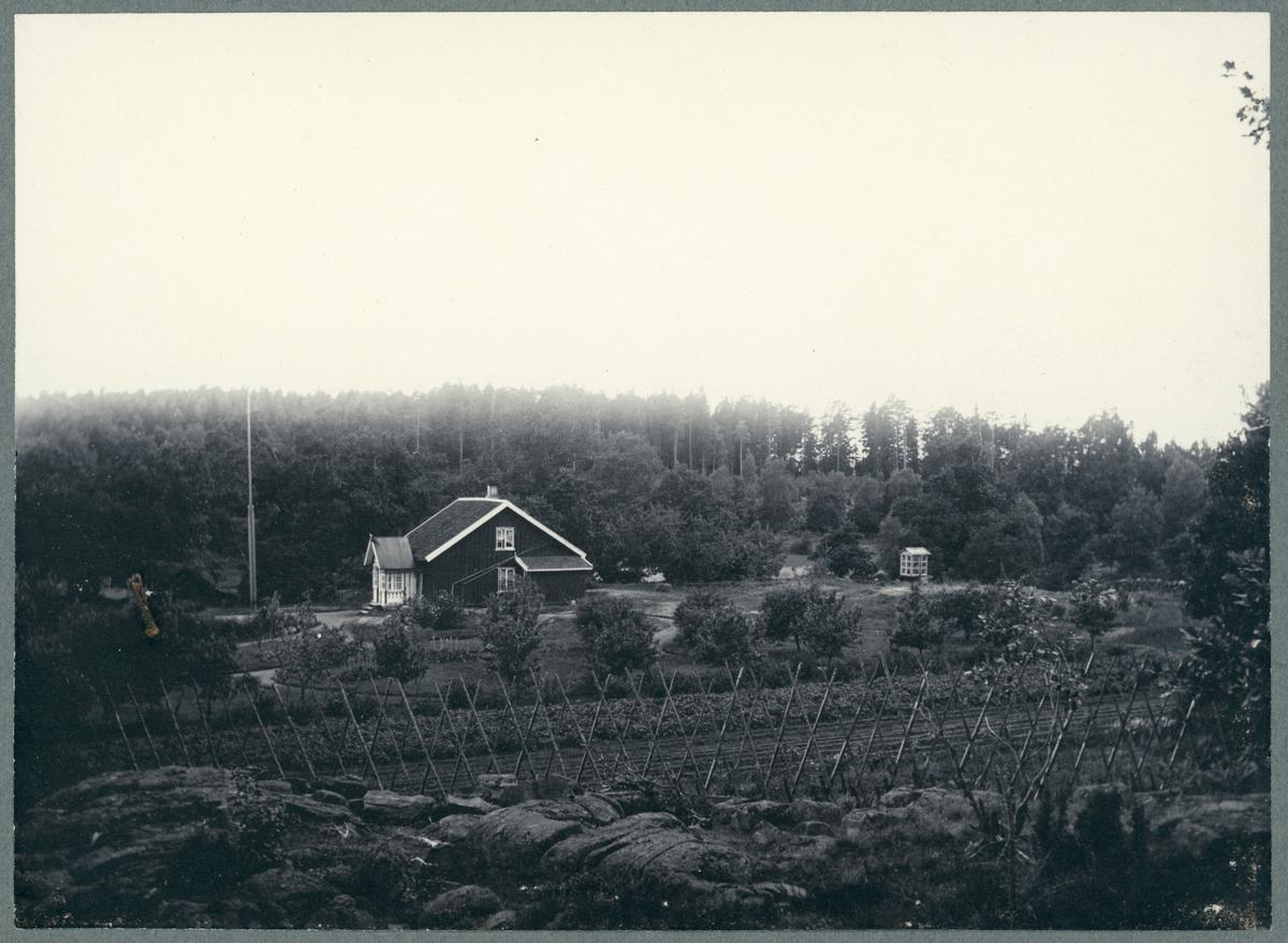 Halleberg, Uggledalen