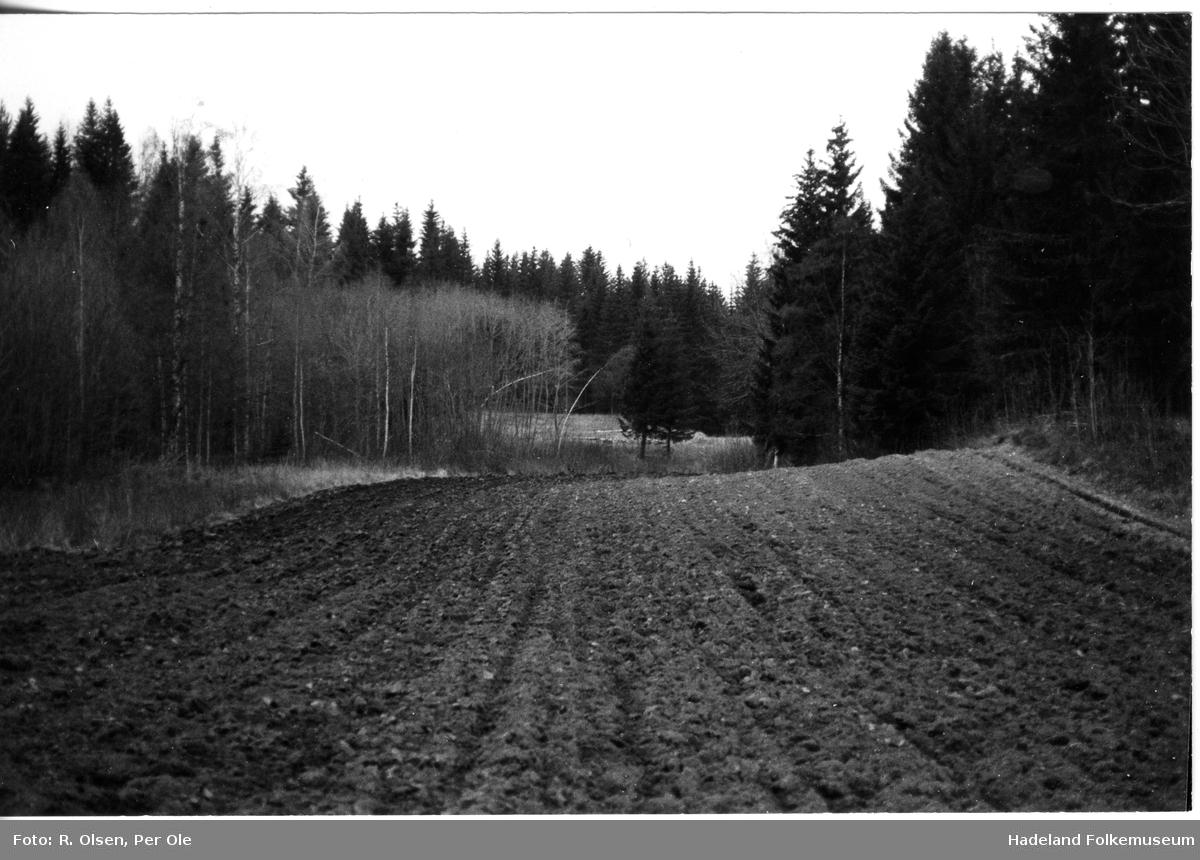 Åtte fotos av plassene Øvre Kleggerud og Kleggerudstua under Moe i Jevnaker.