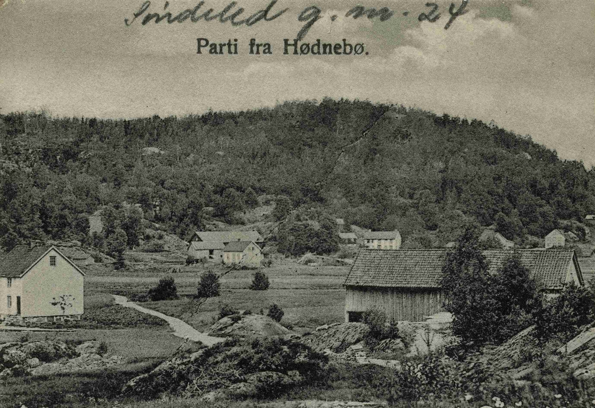 Hødnebø- G.nr. 24