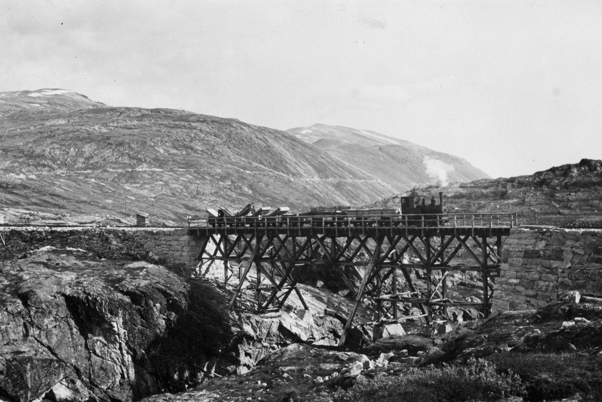 Tog på bro ved utløpet av elva fra Holbuvatn. Toget er på vei til Osvatn, og har nettopp forlatt Holbu st. Den lyse stripa i åssiden i bakgrunnen er banens trase mot Topp heis.