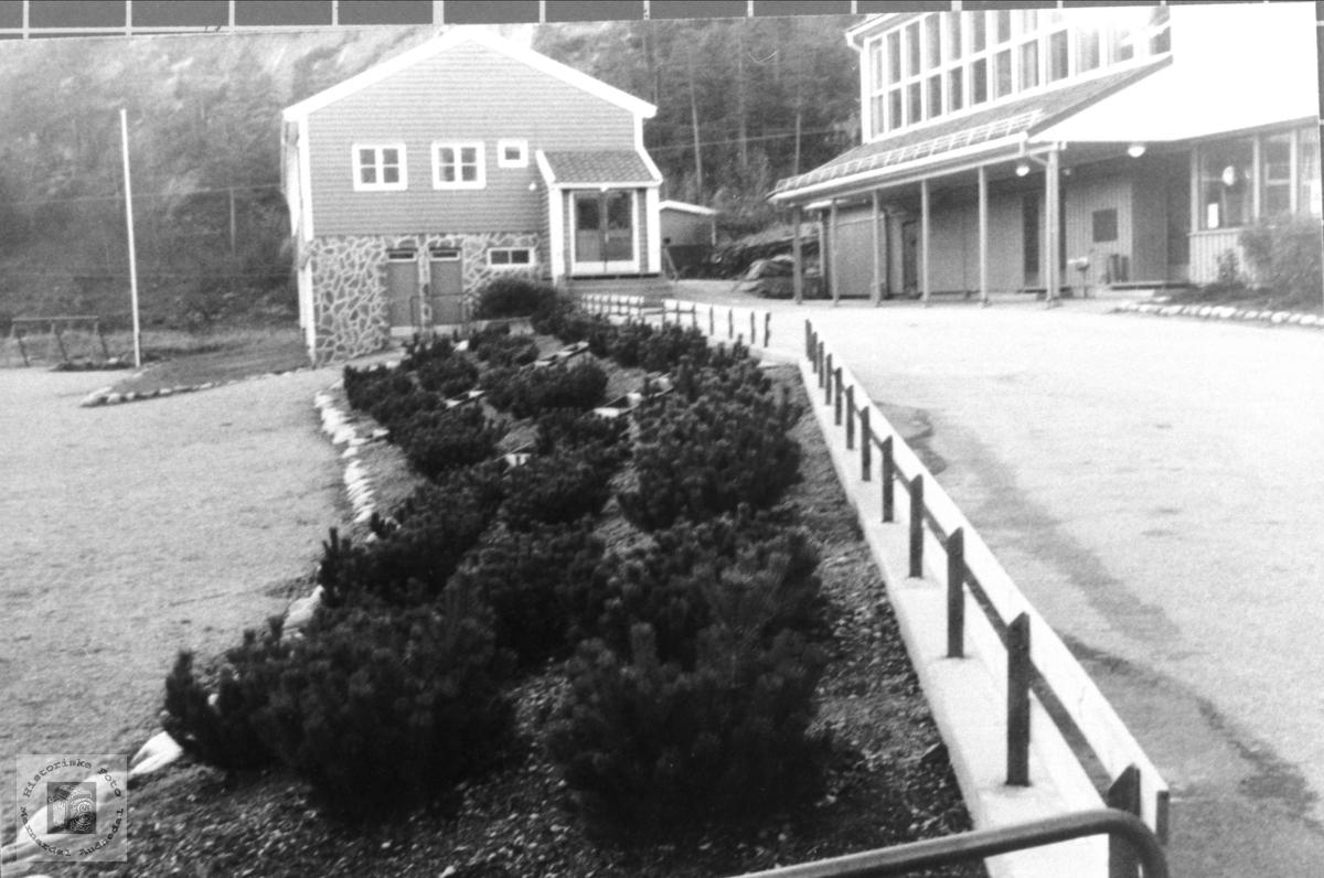 Skulebygget på Bjelland.