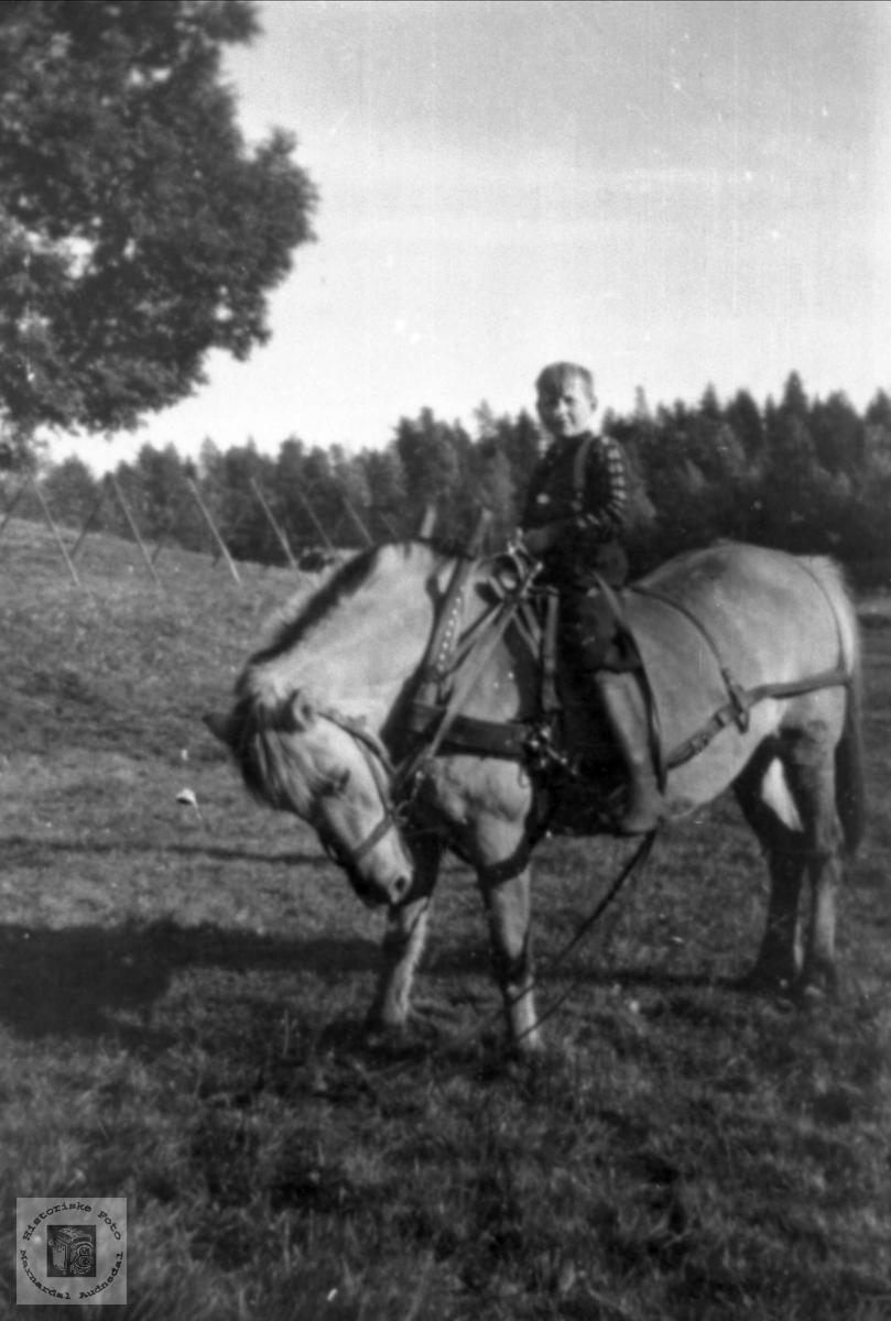 """Portrett. """"Rundt på tunet gå, med Vesle-gut på nakken"""". Oddleif Ågedal, Bjelland."""