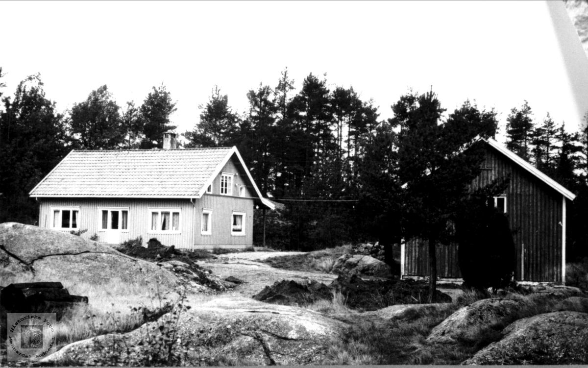 Kvimyr i Øyslebø.