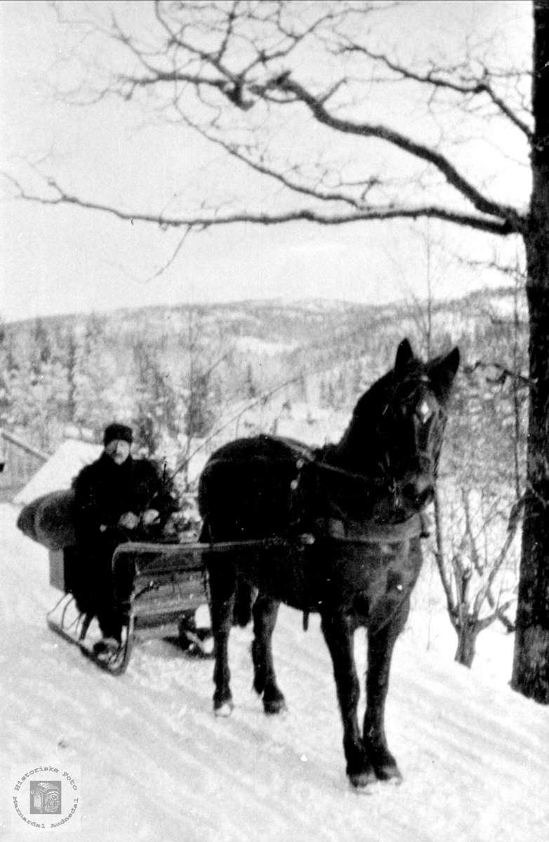 Andreas Grill Fasting med hesten Brita på Øyslebø.