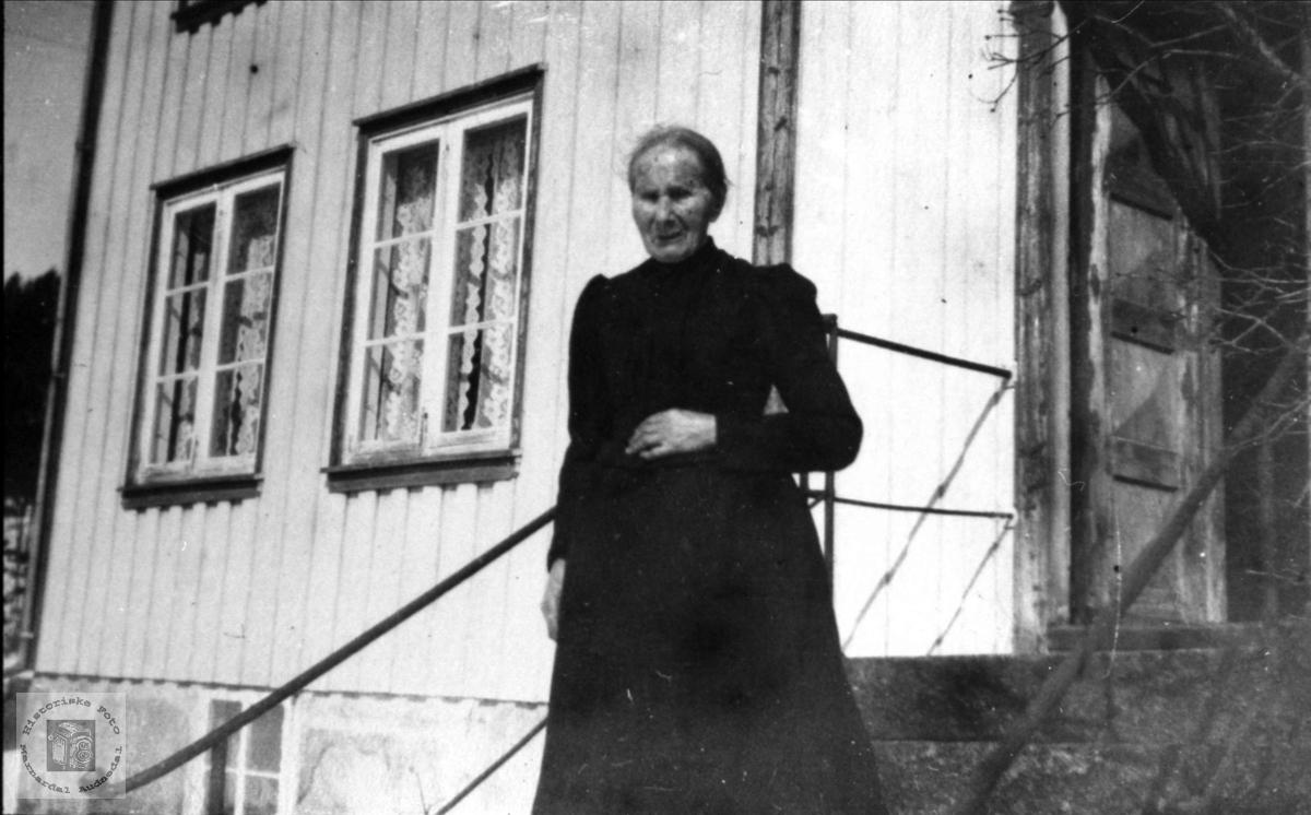 Portrett av gardskone Todne Finsdal, Øyslebø.