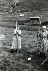 Prestegardshusstølen i stølsområdet Løkenstølane . Frå venst