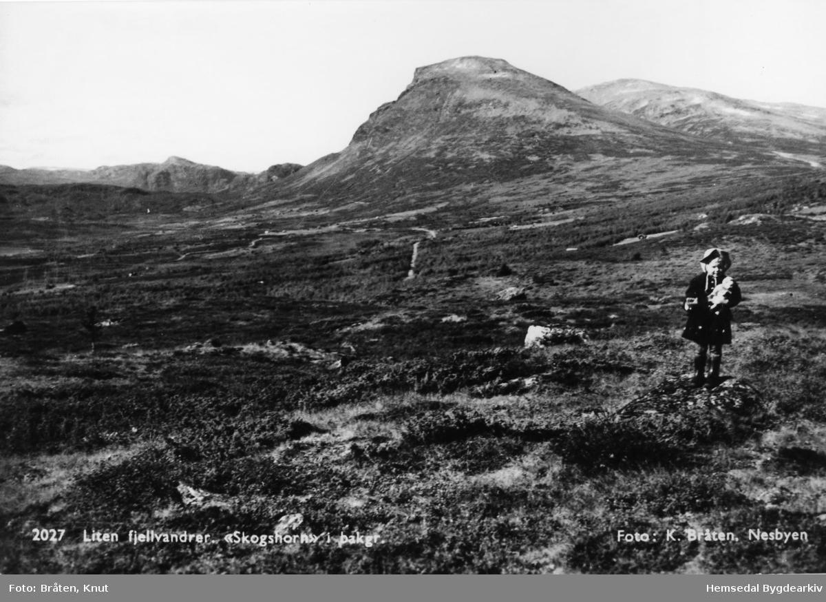 Jonstølane i Hemsedal med fjellet Skogshorn i bakgrunnen.