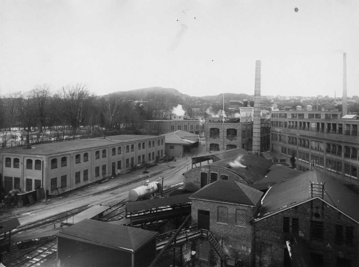 Papyrus fabriksområde.