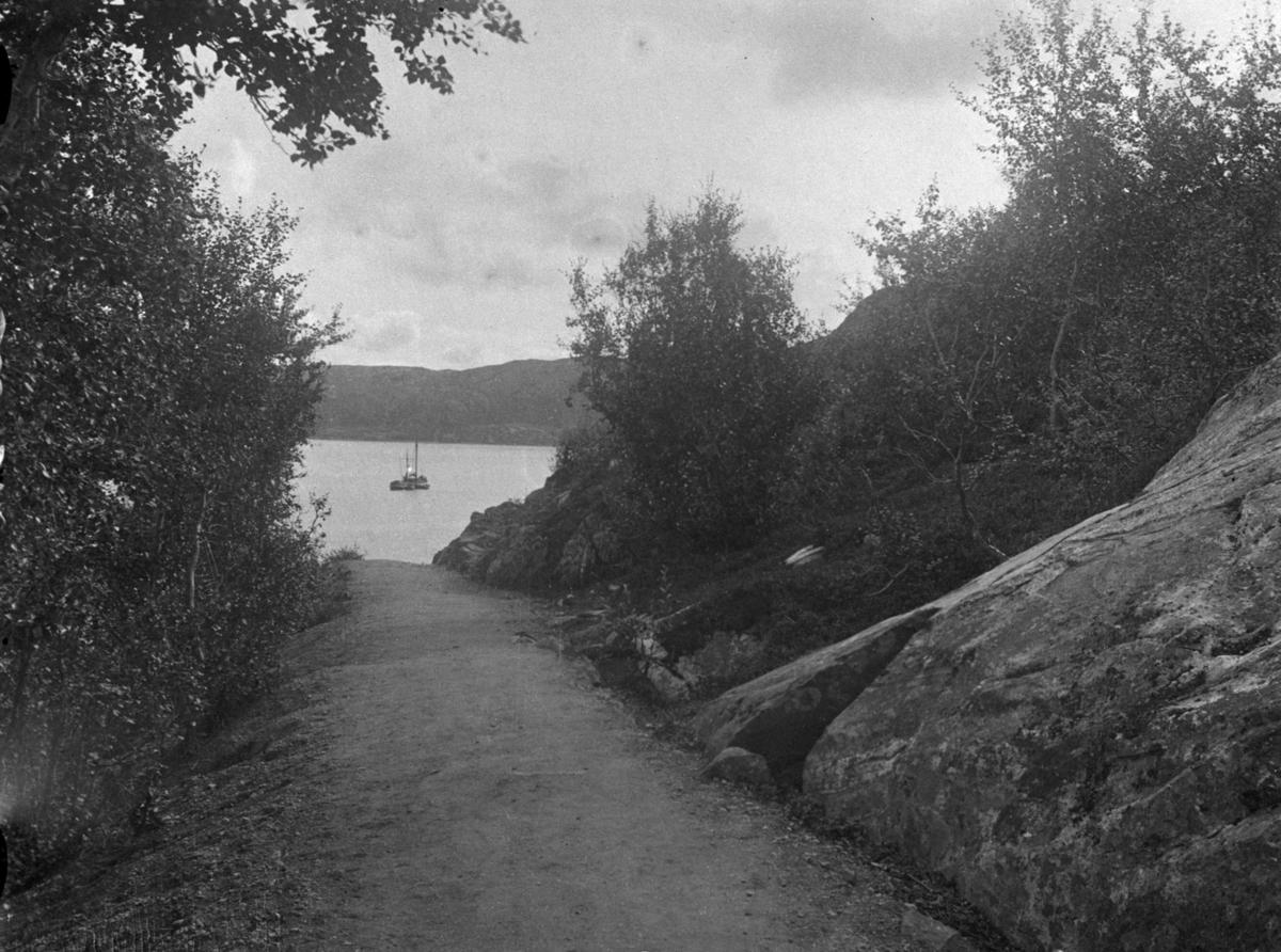 Et landskapsbilde fra Kirkenes. En grusveg ned til fjord. Seilbåt på fjorden.  Bjørketrær på begge sider av veien.