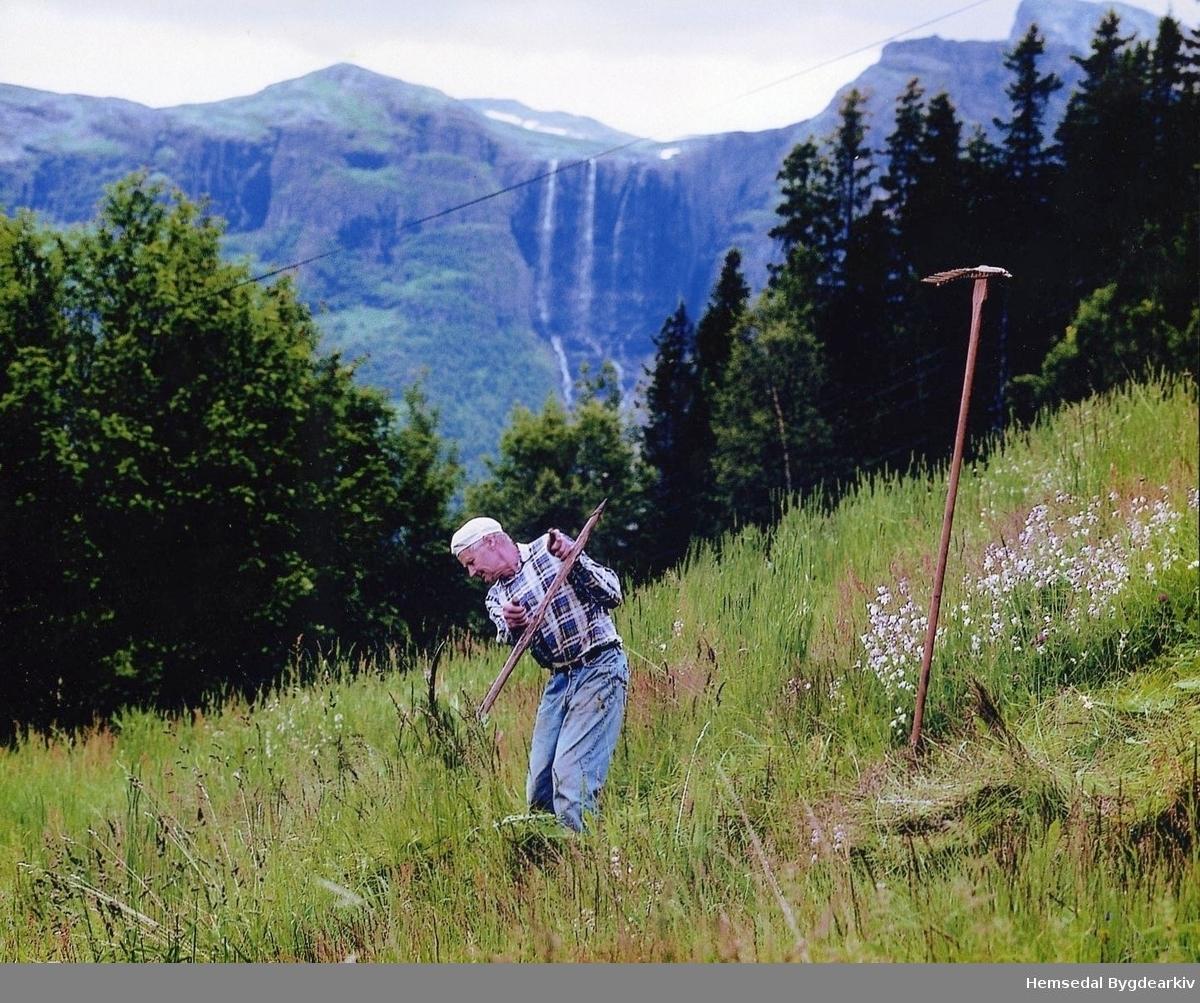 Biger Ålrust syner bruk ljåen, langorv, gamal slåttereiskap. Bruk av trerive vart synt i etterkant. Fotografen var på oppdrag frå Hemsedal Turistkontor. Hydnefossen i bakgrunnen.