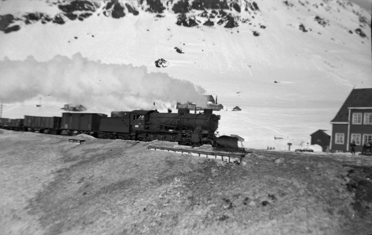 Godstog fra Bergen ved Upsete, trukket av damplokomotiv type 39a nr. 308.