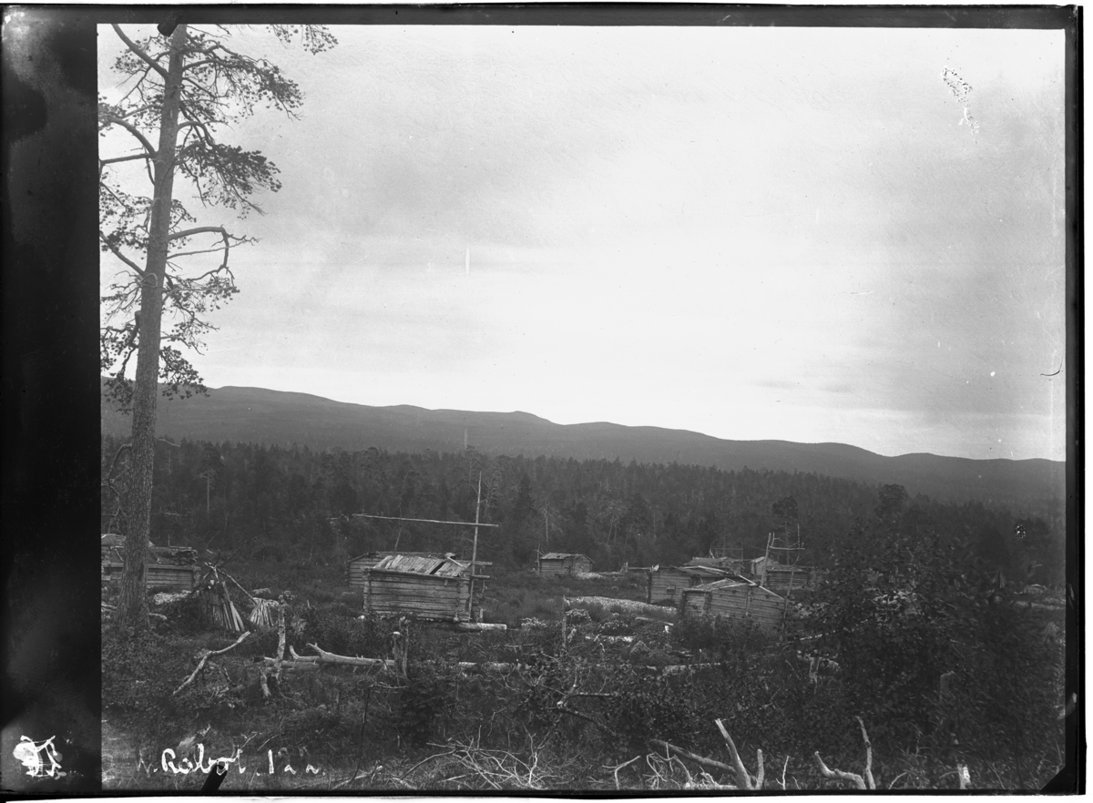 """""""Vinterby av lappar fra Boris Gleb i skogen på østsiden av Tsalmijaure"""""""