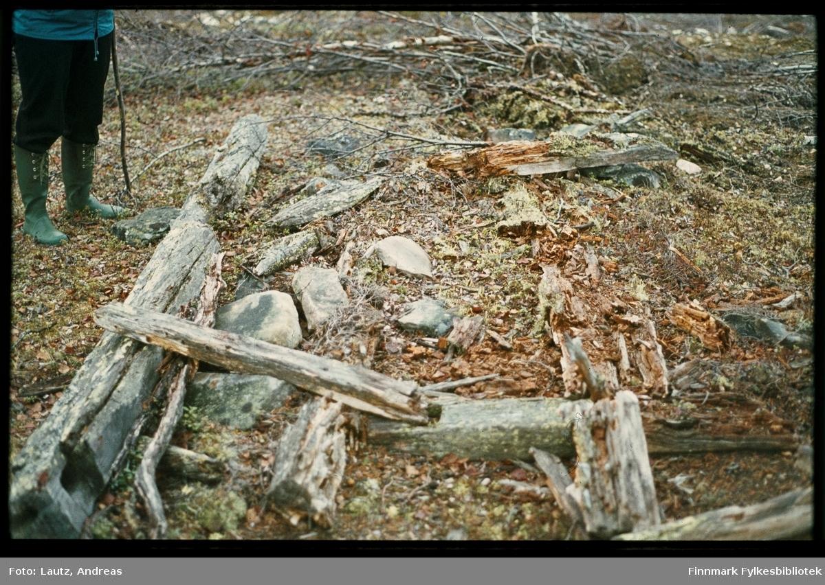 Karasjok. Rester av ulvefelle. 1972.