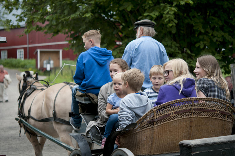A group of children and youth riding with horse-and-carriage