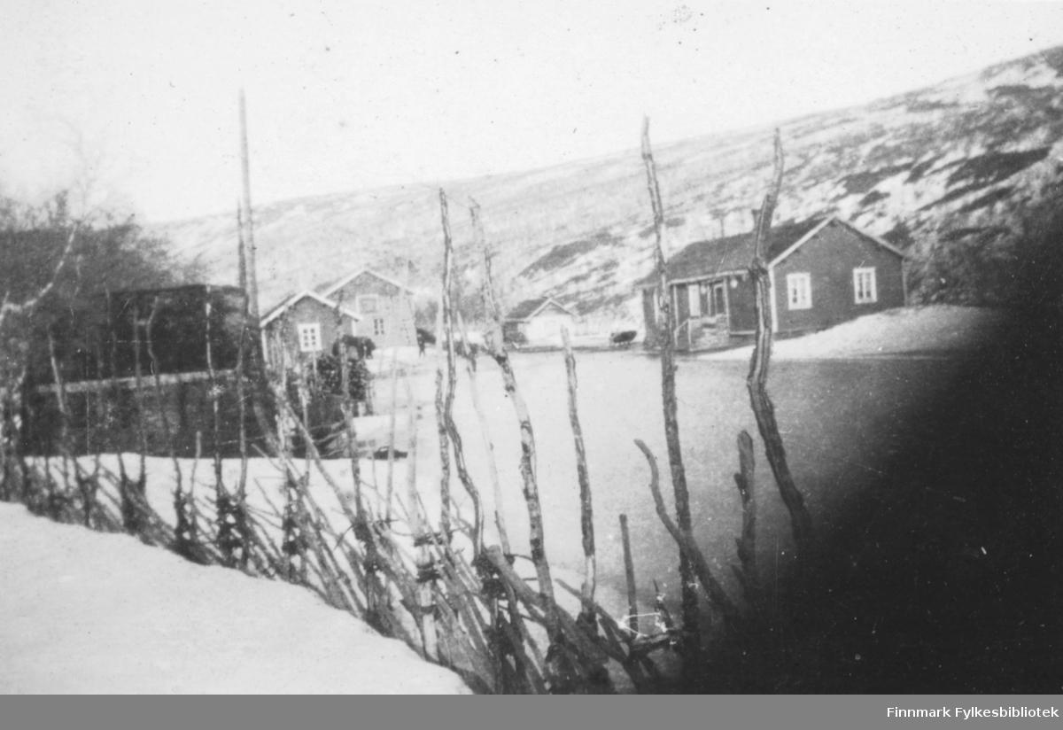 Landskapsbilde med skigard i forgrunnen og flere hus . Vinterbilde. Muligens en gård et sted i Tana.