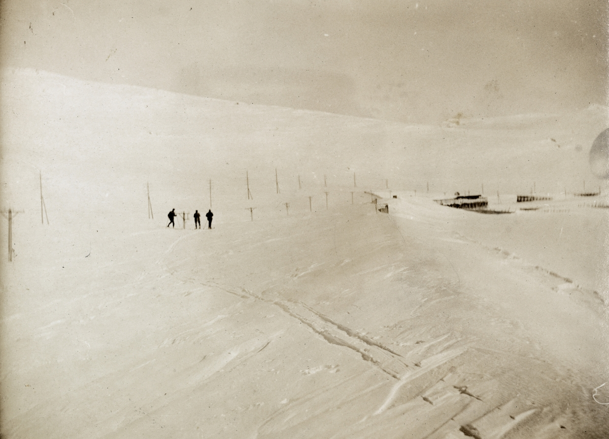 Ved Bergensbanens høyeste punkt, Taugevatn vest for Finse. Nedsnødd snøoverbygg, snøskjermer og telefonledning.