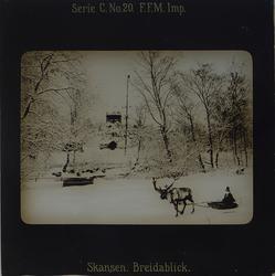 Vintervy från Skansen. I förgrunden en ren som drar en ackja