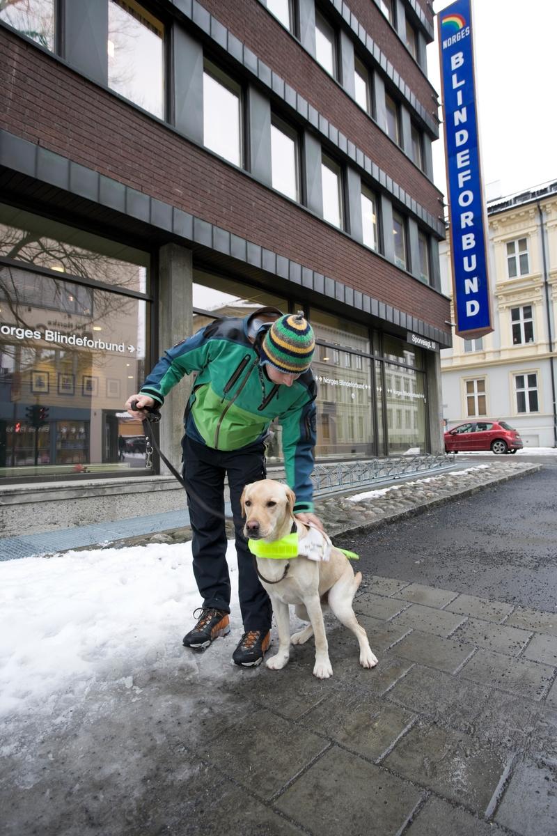Førerhundskole. En kommende førerhund er på treningsøkt med sin førerhundtrener i et bymiljø på Majorstuen.