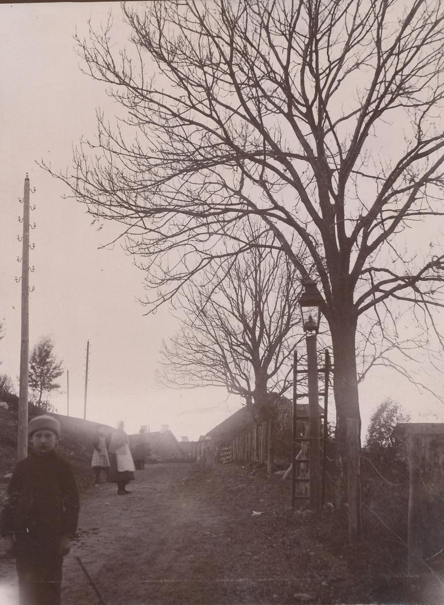 Tønsberg, Vei med nakne trær, hus, gatelykt og mennesker.