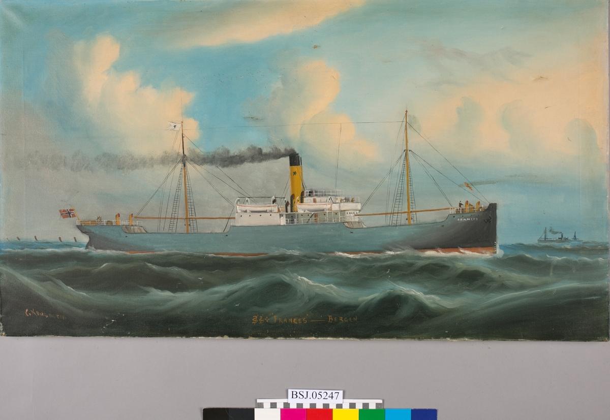Skipsportrett av dampskipet FRANCES på åpent hav. Blå himmel og skyer, bølger med måker. Et annet mindre dampskip i horisonten. Rederimerke på vimpel og skorstein, samt norsk flagg i akter.