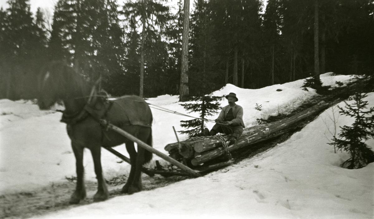Hest m/tømmerlass i Galåsen (Galåsberget). Mann sittende oppå tømmerlasset.